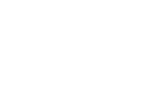 American Falcons